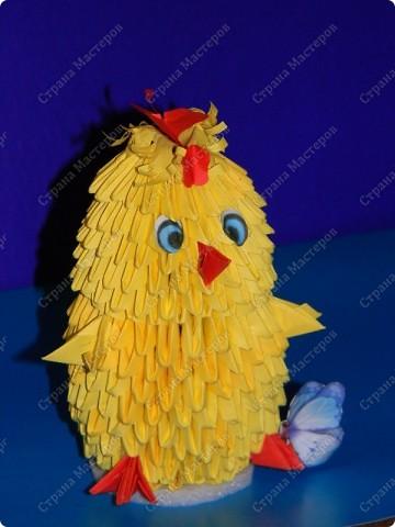Цыпленок сына. фото 1