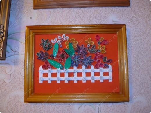 цветы в рамке