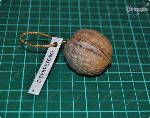 Мастер-класс Поделка изделие Новый год Орешки с секретом МК + совет Бумага Клей Краска Продукты пищевые Скорлупа ореха фото 6