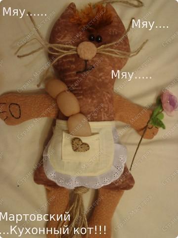 Вот такой у меня получился мартовский кухонный кот! фото 1