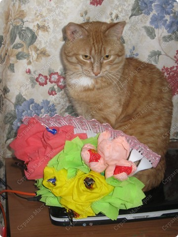 Мой котик с веером для мамы  на День рождения. фото 2