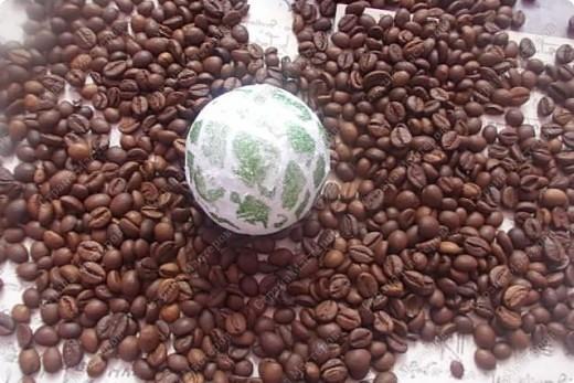 Бонсай топиарий Мастер-класс Моделирование Кофейный топиарий - подробный мастер-класс много фото Семена фото 6