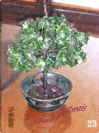 Бисерные деревья ) фото 6