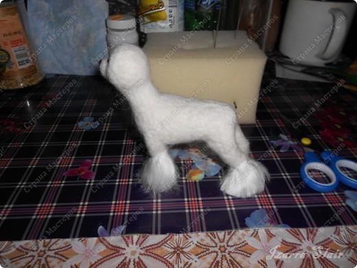 Продолжаю мастер-класс по валянию фигурки мальтезе первая часть тут http://stranamasterov.ru/node/371260 фото 3