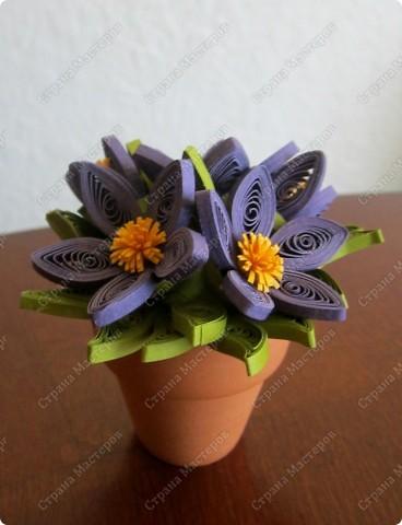 """Всем привет! Вот несколько вазончиков... Нашла маленькие глиняные горшочки и решила """"посадить"""" в них цветочки :)  фото 4"""