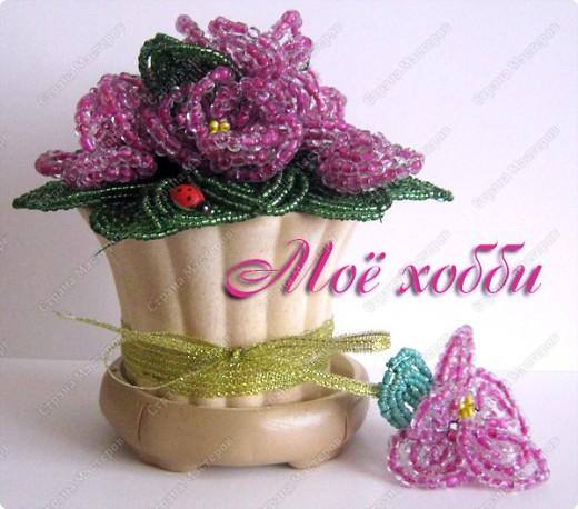 Плела для дочери, большущей любительнице обрывать настоящие фиалки))) фото 1