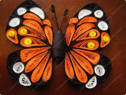 Всем привет! Хочу показать вам свою бабочку в технике квиллинг. Это первая ... Есть некоторые погрешности... Очень хочу создать коллекцию таких бабочек :) Размер - 12смх10см