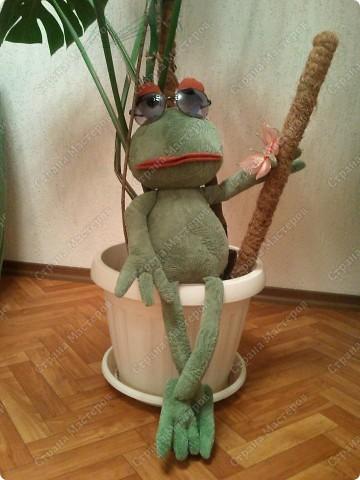 Заказали лягушку да не простую , а по фото взятом из интернета, нужна была точно такая же!!!  фото 8