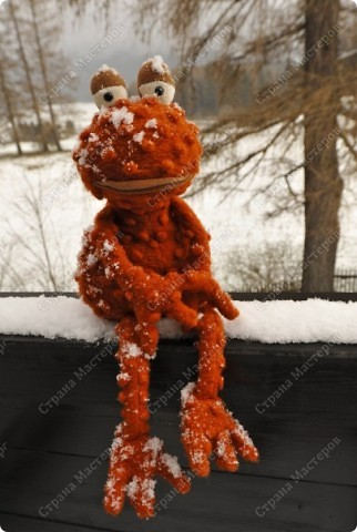 Заказали лягушку да не простую , а по фото взятом из интернета, нужна была точно такая же!!!  фото 10