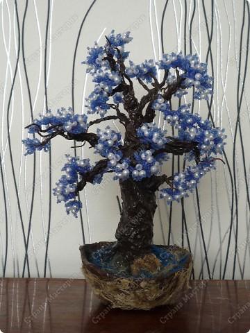 не знаю как его назвать)) Просто синее деревце)) фото 1