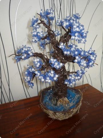 не знаю как его назвать)) Просто синее деревце)) фото 3