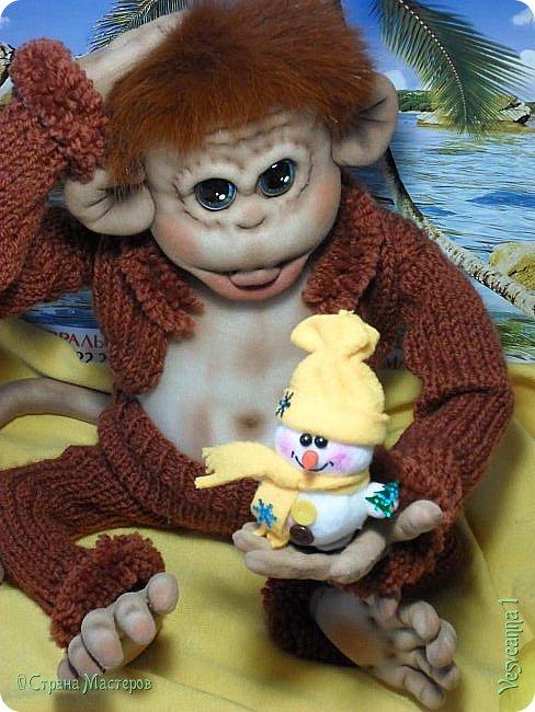 Здравствуйте всем , кто заглянул в гости! Встречайте, у меня новый гость! Жила-была обезьянка.( не знаю как ее зовут). фото 12