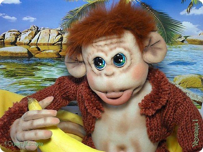 Здравствуйте всем , кто заглянул в гости! Встречайте, у меня новый гость! Жила-была обезьянка.( не знаю как ее зовут). фото 2