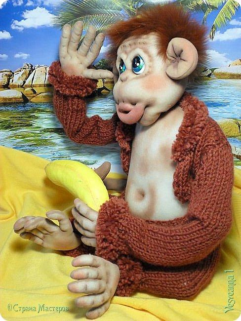 Здравствуйте всем , кто заглянул в гости! Встречайте, у меня новый гость! Жила-была обезьянка.( не знаю как ее зовут). фото 3