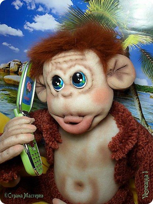 Здравствуйте всем , кто заглянул в гости! Встречайте, у меня новый гость! Жила-была обезьянка.( не знаю как ее зовут). фото 14