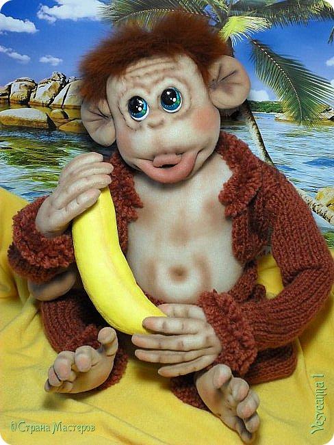 Здравствуйте всем , кто заглянул в гости! Встречайте, у меня новый гость! Жила-была обезьянка.( не знаю как ее зовут). фото 4
