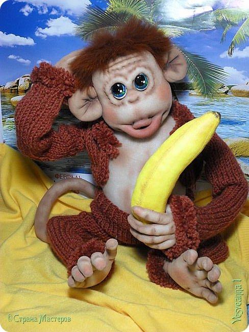 Здравствуйте всем , кто заглянул в гости! Встречайте, у меня новый гость! Жила-была обезьянка.( не знаю как ее зовут). фото 5