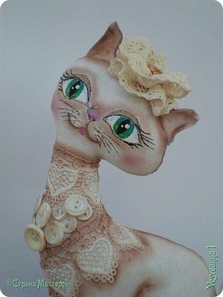 """Кошки не похожи на людей:  Кошки - это кошки.  Люди носят шляпы и пальто -  Кошки часто ходят без одёжки.  Кошки могут среди бела дня  Полежать спокойно у огня.  Кошки не болтают чепухи,  Не играют в домино и в шашки,  Не обязаны писать стихи, -  Им плевать на разные бумажки...  Людям не сойти с протоптанной дорожки,  Ну, а кошки - это кошки!              Борис Заходер  Здравствуйте все, кто заглянул в гости! Весна наступила и кошечки прихорашиваются, ждут своих котиков. Это кошечка """" Сердечная"""". Она украсила себя разными сердечками. фото 6"""