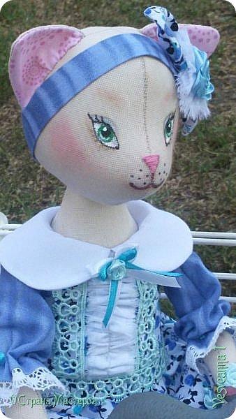 Здравствуйте! Знакомьтесь - киса Анфиса!  Кошечка сшита по замечательному  мастер-классу Ларисы Садаковой. фото 6
