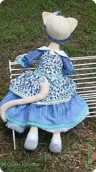 Здравствуйте! Знакомьтесь - киса Анфиса!  Кошечка сшита по замечательному  мастер-классу Ларисы Садаковой. фото 5