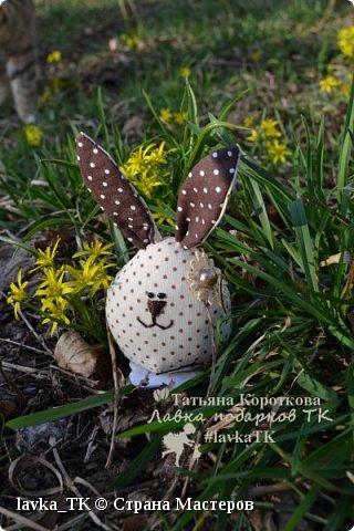 пасхальные кролики фото 3