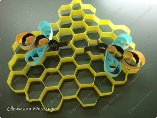 Наши пчёлки фото 1
