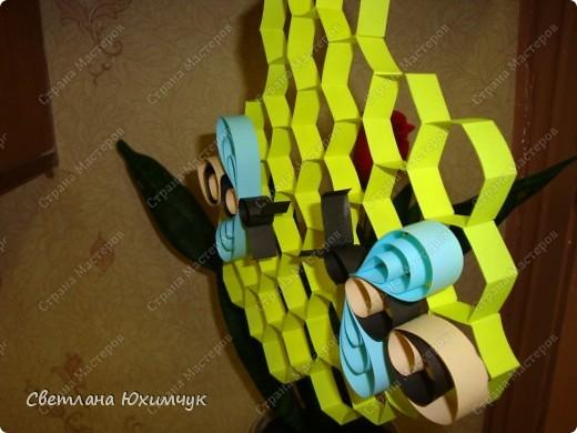 Наши пчёлки фото 2