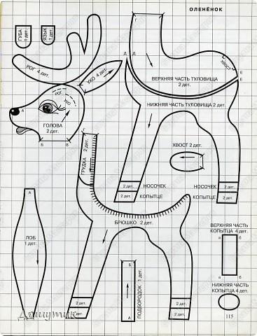1.Тюлень  фото 6