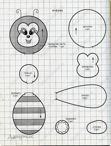 1.Тюлень  фото 8
