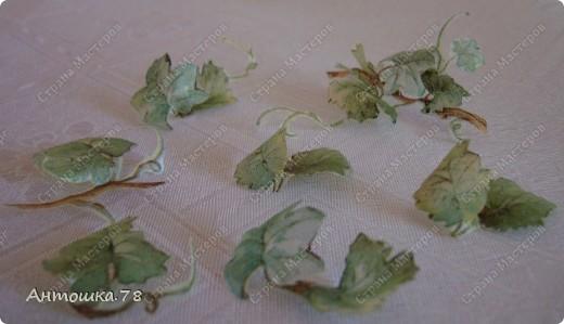 Мой второй опыт в объёмном декупаже. Красива виноградная лоза. Манит нас, истекая соком винным. И наслаждаются мои глаза Чарующим, неповторимым видом. Дрожит, играя с шалунишкой - ветром . Зелёных листьев, сотканный ажур. И прижимаясь к гроздьям знойным летом Ласкает, соблазняя, как амур. http://stranamasterov.ru/user/20537 мастер-класс по работе с термоплёнкой. Техника объемного декупажа Sospeso Trasparente была изобретена итальянкой Моникой Аллегро. фото 7