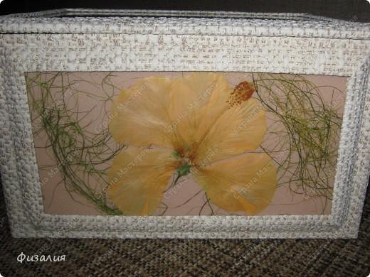 Вот такой ларец мне задумалось сделать. У меня цветет гибискус. Хотелось сохранить красоту его цветов. Попробовала засушить- неплохой гербарий получается.  Для ларца использовала картонную коробку. Ее обклеила остатками обоев.  Далее взяла потолочную плитку, на нее наклеила сухие цветы, листья, сизаль, сверху- стекло ( тонкое стекло от рамок), его клеила по краю. Готовые композиции приклеила на коробку. Оформила рамками, тоже из обоев. фото 3