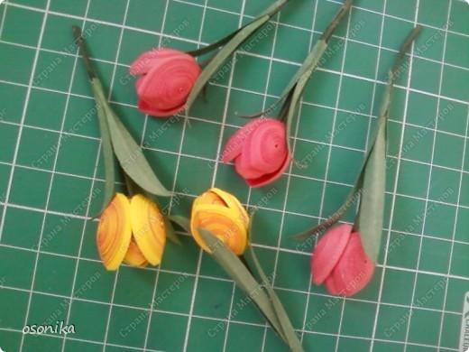 Такие тюльпаны мы делали на курсах. Цветок размером 1,5 см, со стебельком 4-5см получается фото 10