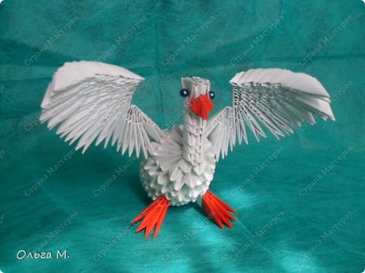 модульное Наши птицы
