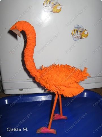Захотелось сделать птицу из гофрированной бумаги. Сперва хотели с дочкой сотворить страуса, но потом решили , что у нас должен появиться ещё один фламинго(первого мы делали из модулей)! Кстати. по этой же схеме можно сделать и белого или чёрного лебедя, только немного изменив крылья и уменьшив ноги. фото 22