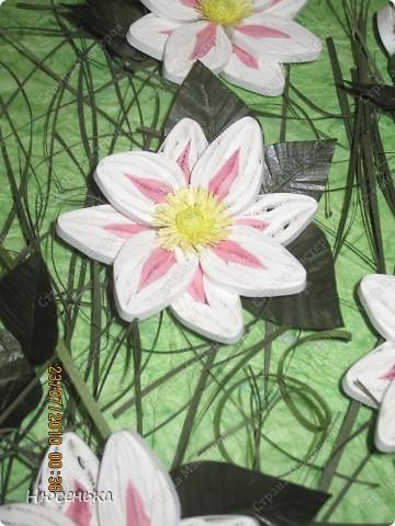 """Вот теперь работой я довольна. Рамочка куплена """"Рамки для квиллинга"""" http://ramkiquilling.blogspot.com/ фото 4"""