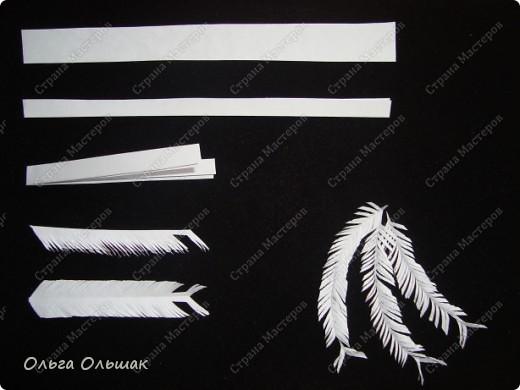 Знакомьтесь: конкурент первому павлину -белый павлин альбинос  на кусте роз. фото 10