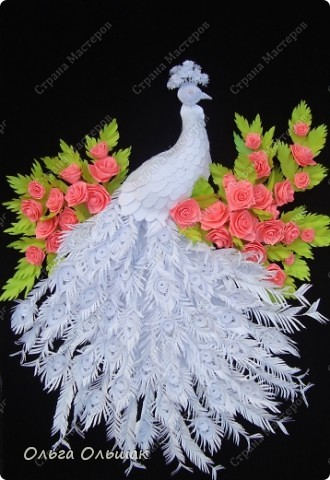 Знакомьтесь: конкурент первому павлину -белый павлин альбинос  на кусте роз. фото 9