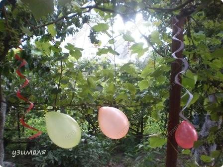 Надули и развесили шарики, фото 2