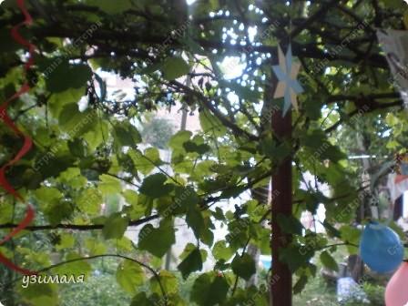 Надули и развесили шарики, фото 3
