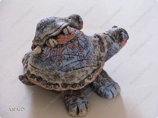 Черепаха — символ небесной поддержки и защиты, а также мудрости и долголетия. Она приносит деньги и поддержку полезных людей
