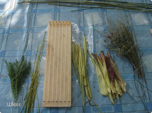 Травы собраны по дороге на речку. фото 4