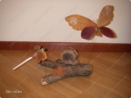 В лесу дерево листья материал