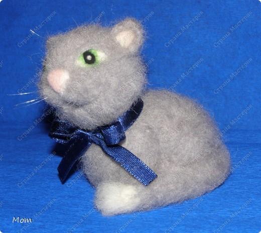 Котик свалян из шерсти. Усы и бровки из мононити. фото 5