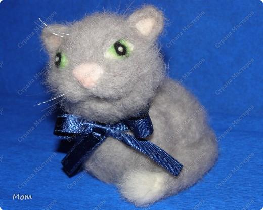 Котик свалян из шерсти. Усы и бровки из мононити. фото 2