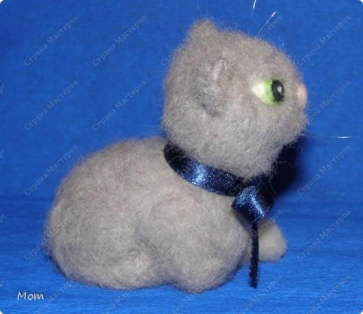 Котик свалян из шерсти. Усы и бровки из мононити. фото 4