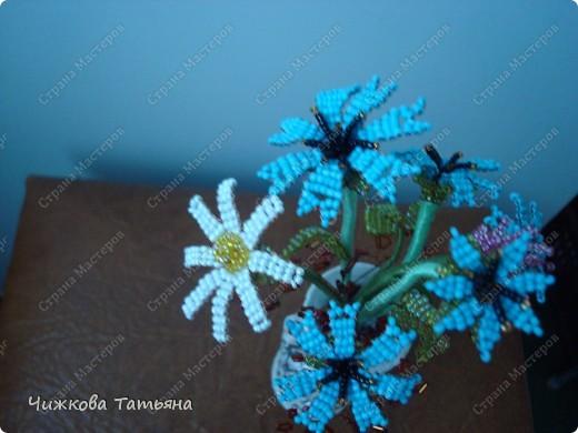 Теперь благодаря бисеру мои любимые цветы круглый год будут меня радовать. фото 2