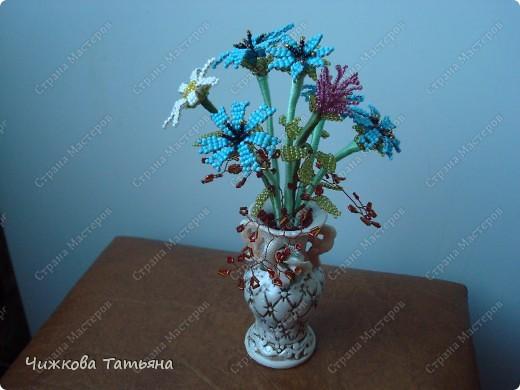 Теперь благодаря бисеру мои любимые цветы круглый год будут меня радовать. фото 4