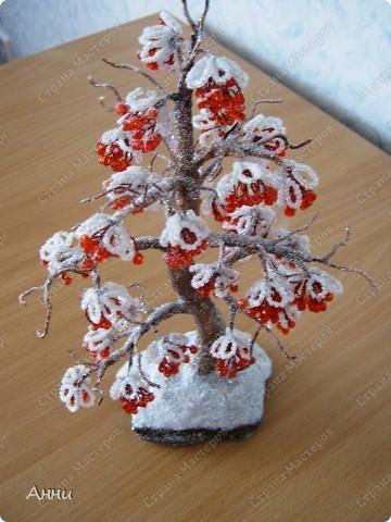 Показаны картинки по запросу Рябина из Бисера под Снегом.