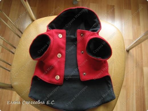 пальто (брюшко) фото 1