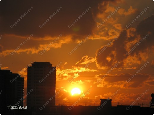 Последнее в этом году жаркое солнышко. фото 3